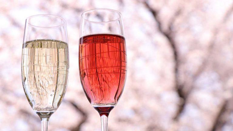 ソムリエ推薦!お花見シーズンにおすすめのワイン6選