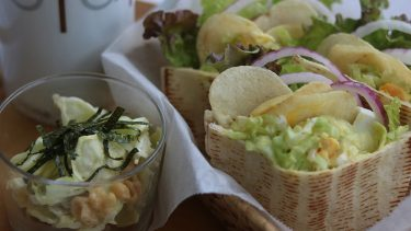 春キャベツを楽しむためのレシピ2つ #ホマレ姉さんのレシピ