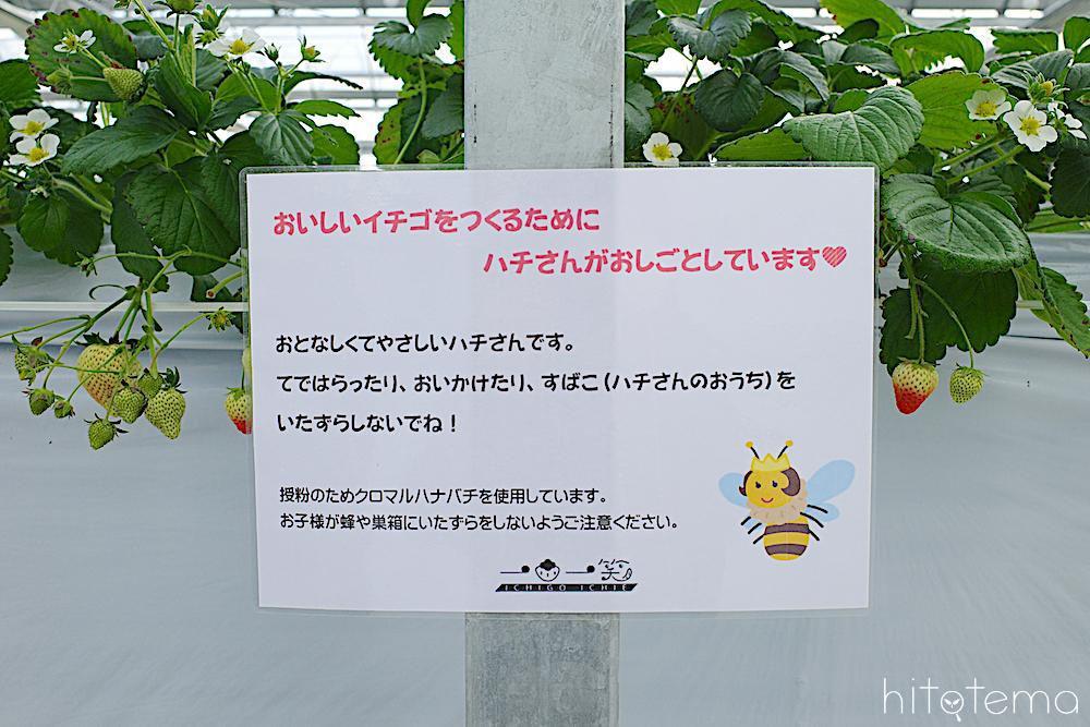 ハチ注意書き
