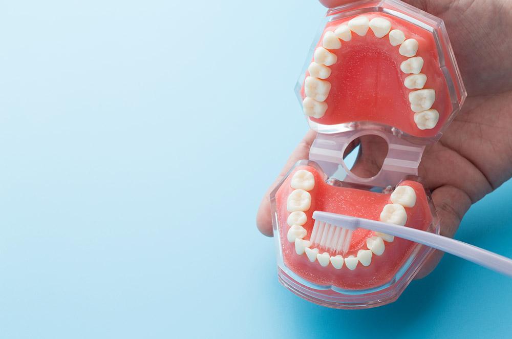 口内の菌のタイプで選ぶ