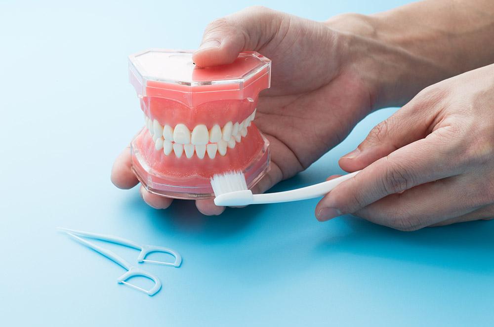 歯茎のタイプで選ぶ