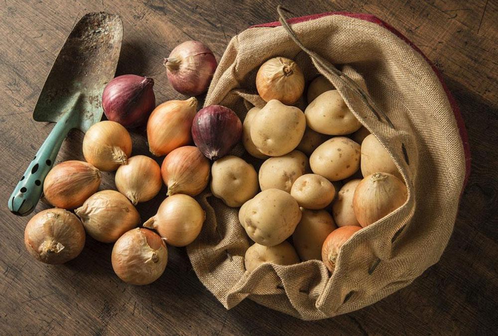 常温保存の野菜や果物はどうやって保存する?適した収納場所は?