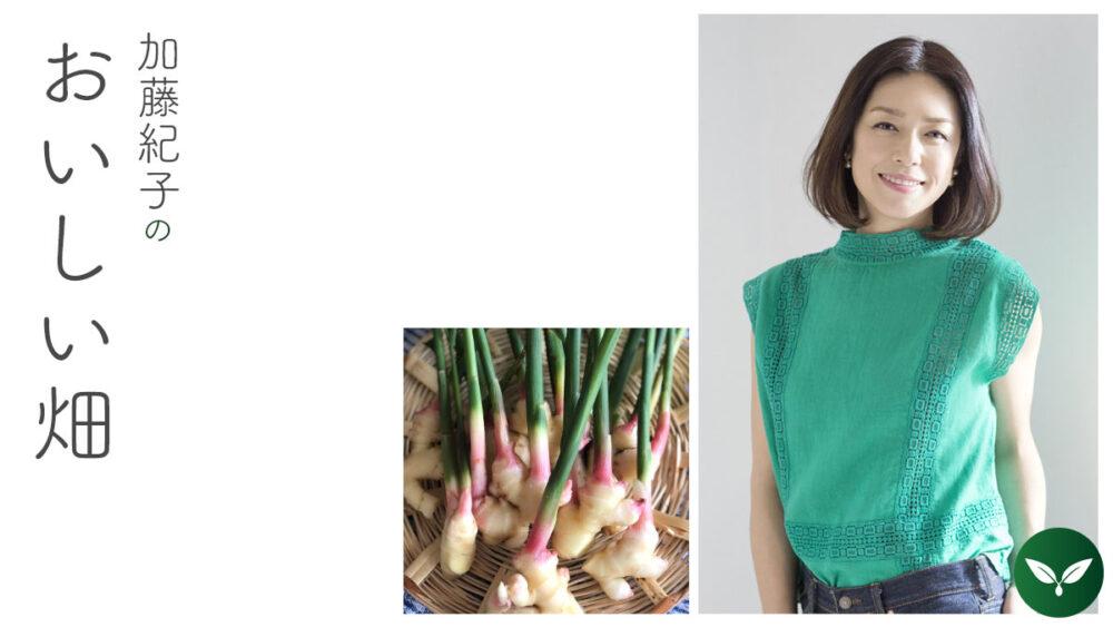 初めましては谷中ショウガ #加藤紀子のおいしい畑 vol.1