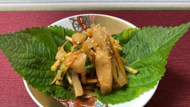 韓国のオジンオフェ。新鮮なイカのお刺身を酢コチュジャンで! #世界の料理