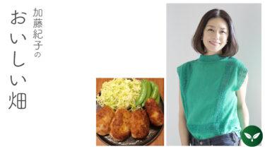 春、新しい畑グッズと揚げ鍋と。 #加藤紀子のおいしい畑