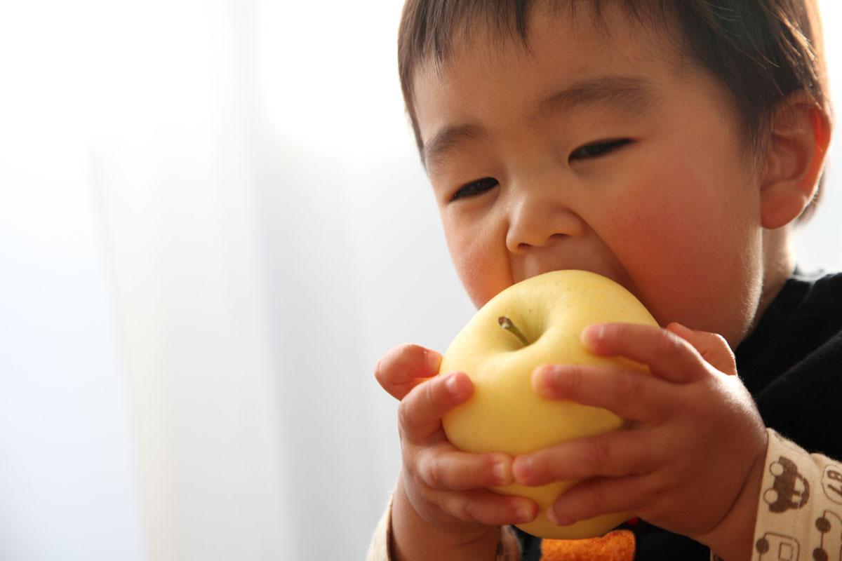 りんごを食べる子ども