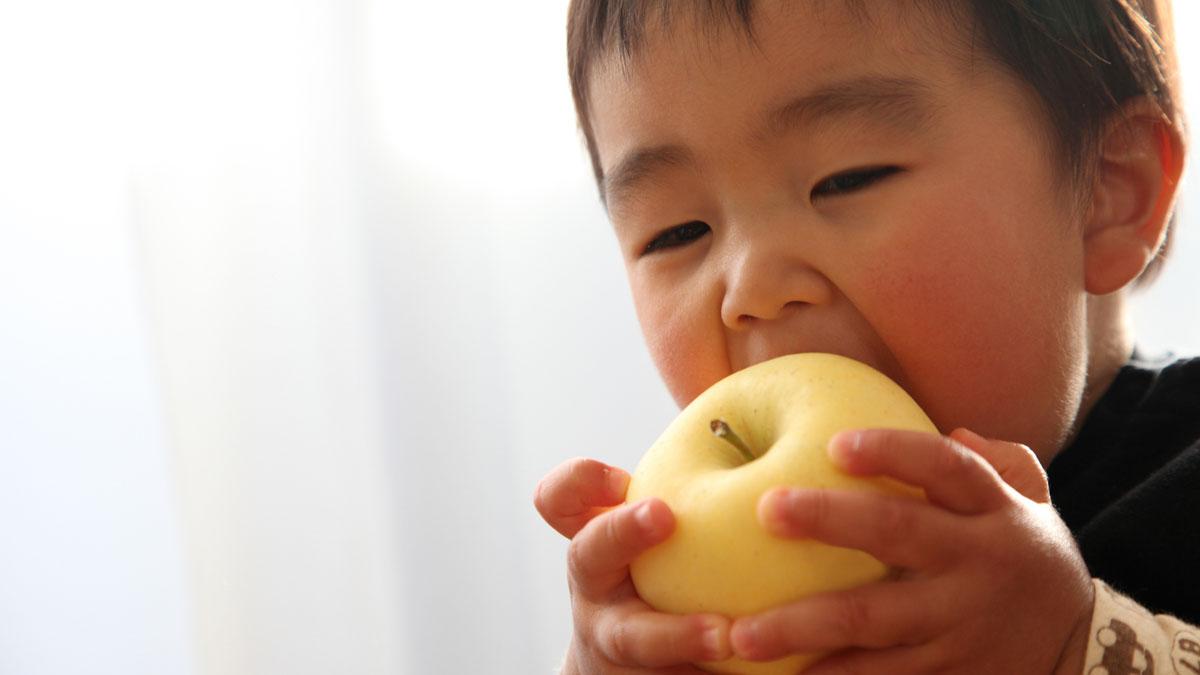 大人になっても必要!子どもの「噛む力」の育て方 #歯科衛生士の歯の教室